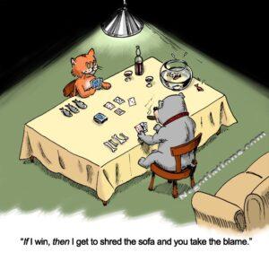 negotiating cat and dog